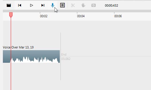 VideoDetailer - Voice-Overs